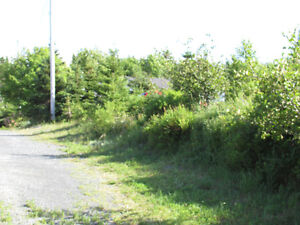 46 CHIPMAN'S ROAD, SPANIARDS BAY…SERVICED BLDG. LOT