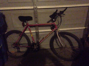 Mountain Bike with Shock Handle Bars Speed Shifters Shock Frame