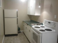 One bedroom basement suite available January 1st. avondale north