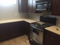 Completely renovated basement suite, $1200 all inclusive