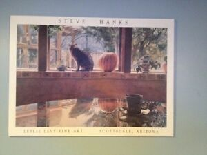 Cat and the pumpkin Steve Hanks picture