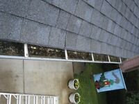 GUTTER CLEANING AND REPAIRS.  VERY IMPORTANT REMOVE THE WEIGHT