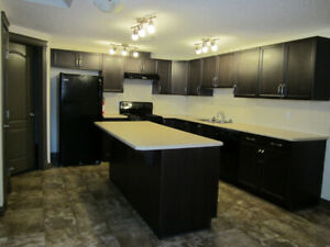 NW EDM~$1290 INCL utilities~2BDRM  LOWER LEVEL~SEPARATE ENTRANCE