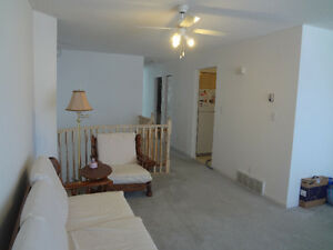First time rental, 3 bed/1 bath for $1600/m incl. utility