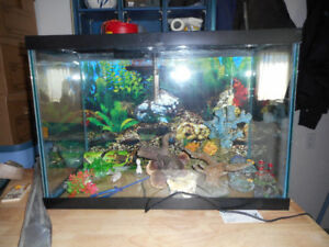 20 GALLON AQUARIUM, PUMP AND ACCESSORIES FOR SALE