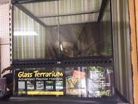 Glass terrarium. . BRAND NEW.
