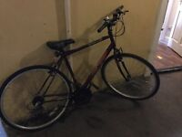 Purple Raleigh bike for sale!