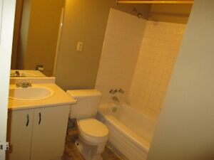 BEAUTIFUL TWO BED ROOM CONDO IN SOUTH OF LONDON CAL 519-673-9819 London Ontario image 3
