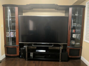 BEST DEAL ON A ENTERTAINMENT/WALL UNIT/STORAGE/LIGHTING