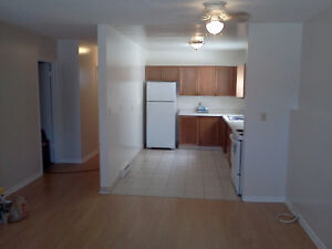 Large lower level duplex apartment central location