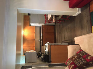 All Inclusive, Furnished Bright 2 Bedroom Basement - Oct to May