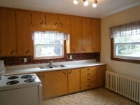 large 2 bedroom apartment riverview .1000 sq feet appli included