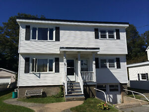 Beautiful Bright 2 Bedroom Flat in Fairview $950