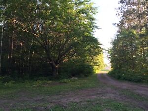 Land for sale - 100 acres