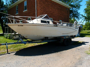 For Sale: 21 foot Glastron SeaFury 216 boat, motor and trailer