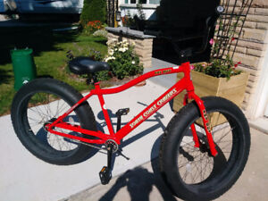 FAT TIRE BIKE ( 2 Speed HUB )