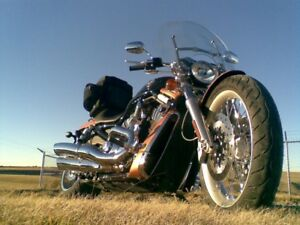 105TH anniversary V-Rod