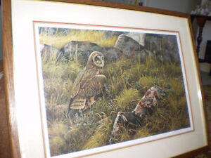 "Robert Bateman Signed Limited Edition Print - ""Short Eared Owl"" Kitchener / Waterloo Kitchener Area image 3"