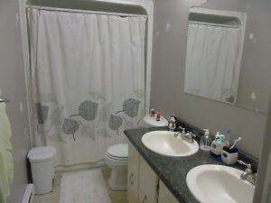 Female Room Mate Wanted Nice Clean House (Everything included)