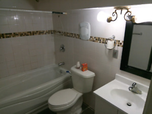 2 bed 1 bath spacious basement util included 1 parking laundry