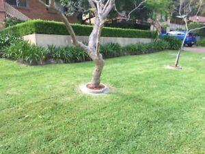 Lawn Mowing Lambton