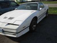 1985 Trans Am SURVIVOR BEST OFFER
