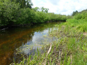 4.5 acres, on Burnt River, $9,999 down, 5-yr open mtg, $940/mo