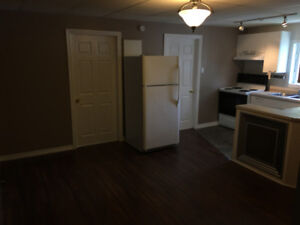Beautiful 2 bedroom renovated apartment-unfurnished or furnished