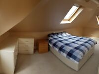 Large beautiful double room for rent