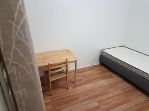 8 Bedroom House for Rent to University Students $450