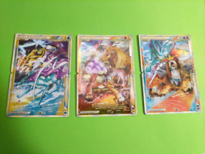 Pokemon Heart Gold Soul Silver: UNLEASHED Complete Set