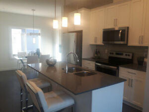 2 bedroom brand new townhouse - FREE Telus internet, tv