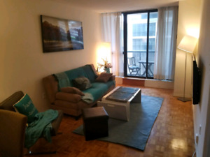 Elegant Fully-furnished one bedroom Apt, at COLLAGE subway
