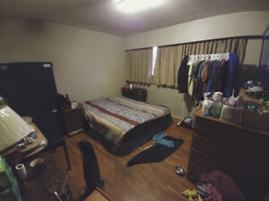 Room available Feb 1 2018 near Kingsway and Rupert