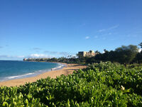 Oceanview Condo Available in Maui - January 17-24