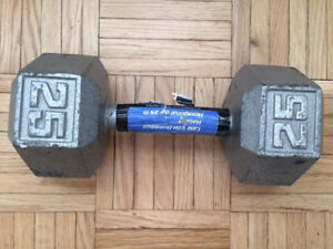 25 LB Gym dumbbell weights