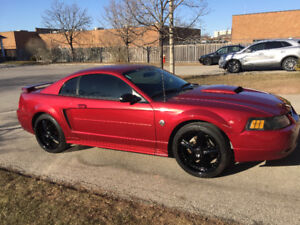 2004 40th anniversary Ford Mustang excellent condition