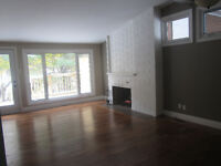 3 bedroom House newly renovated Close to all South Side