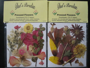 2 pkgs. of  Assorted  Natural Pressed Flowers and Greenery