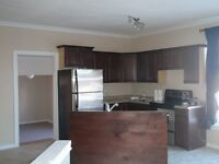 LARGE 3 bedroom bungalow style Appartment