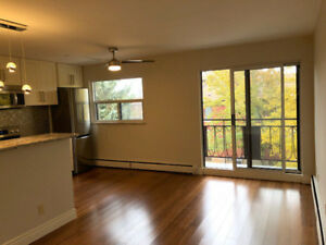 Gorgeous 1 bedroom apartment available  across from Gage Park