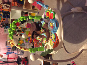 Go wild Jumperoo - Fisher Price Kitchener / Waterloo Kitchener Area image 2