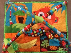 Infantino Play mat for babies