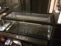 Terrariums/Tanks - Assorted size, price, and type