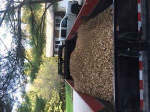 Wood chips/mulch