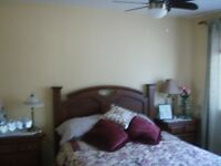 Beautiful Room, Perfect for Student, Professional, Nanny
