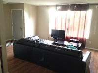 3 Bed 1 Bath for rent Whitecourt