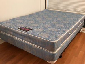Queen Bed, Stainless Steel Pocket Coil Mattress Boxspring Frame