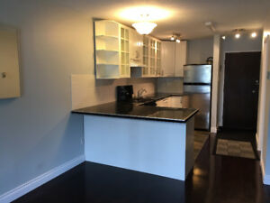 One Bedroom Downtown Apartment 212 339-13 Ave SW