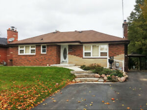 Gorgeous 3 BR, 1 Bath Home (Main Level) with Private Backyard